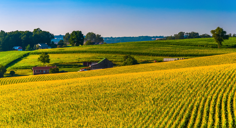View of corn fields and farms in Southern York County, Pennsylvania.